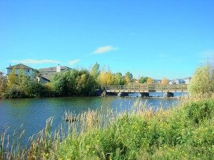 Past Project - Bridlewood Creek in Calgary, AB